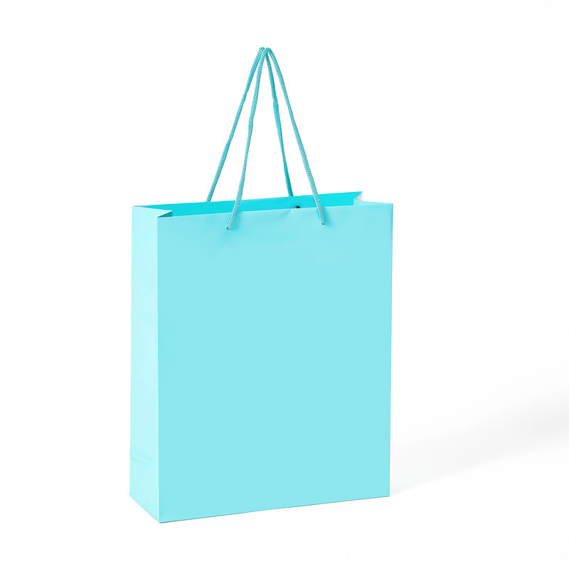 Wholesale Top Quality Custom Coated Daily Shopping Gift Paper Bag With Handle