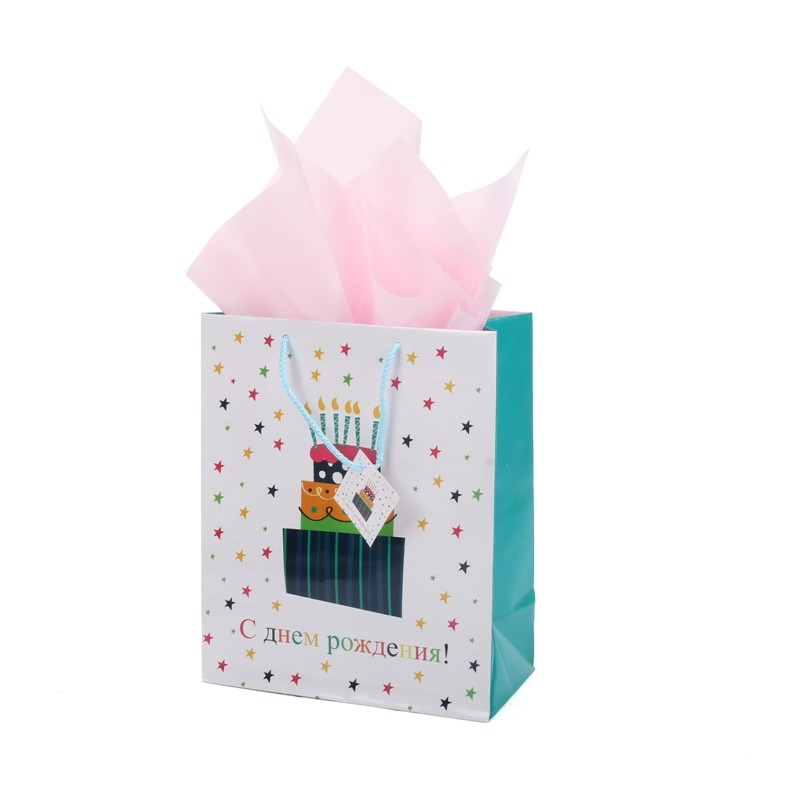 Hot Selling Custom Handmade Birthday Coated Paper Bag With Handle&Tag