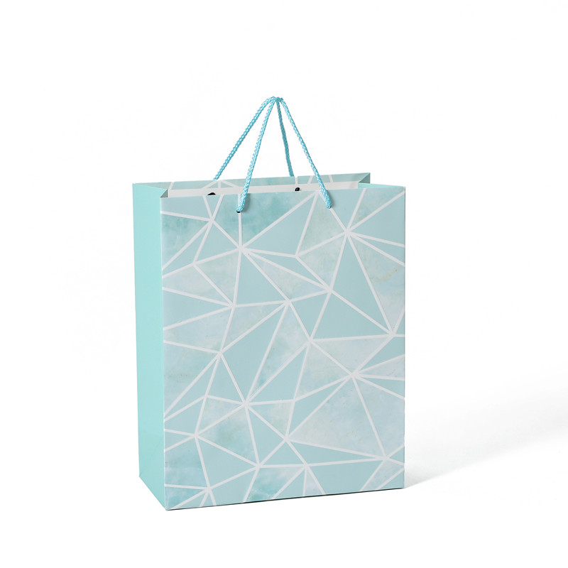 Hot Selling Eco-Friendly Embossing Fancy Daily Shopping Gift Paper Bag