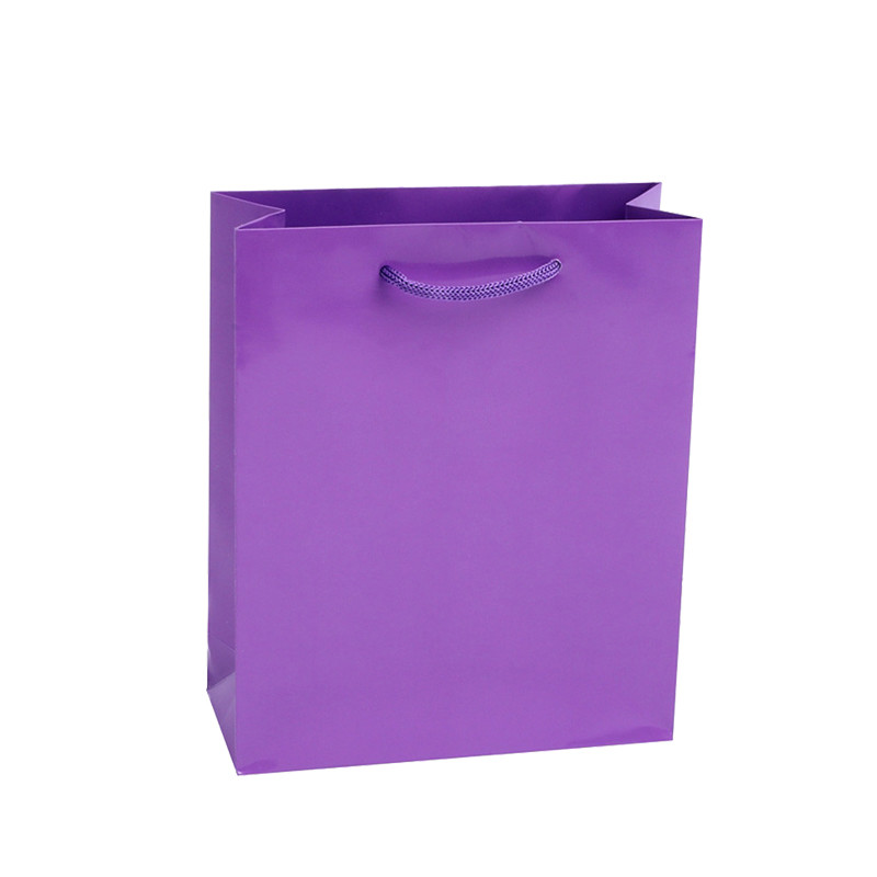 Custom printed gift Paper solid color bags with pp handle